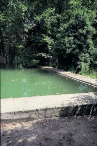 La Bassin du Jas de Bouffan, photographie du site cézannien NR000, Photographie Machotka