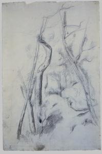 C0792 Dans la forêt 80-83