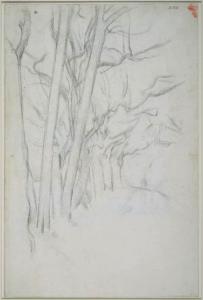 C1180 Étude d'arbre 96-99