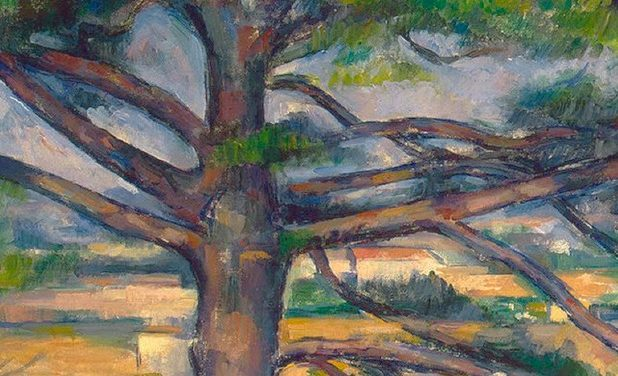Entre nature et peinture : arbres de Cézanne