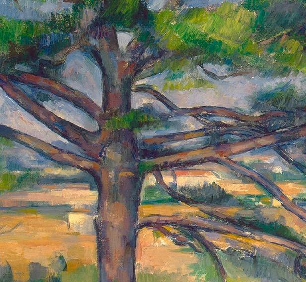 Entre nature et peinture : arbres de Cézanne | Société Cezanne