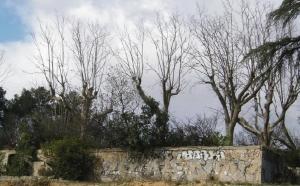 Fig. 20 Mur d'enceinte d'une terrasse située sous le mur de soutènement à son extrémité est.