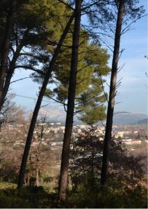 Fig. 60 . La Vallée de l'Arc vue de la colline derrière le Tubet (photographie Didier Bonfort)