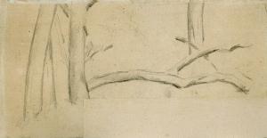 Étude d'arbres, 1871-74, 12,7 x 25 cm Non catalogué
