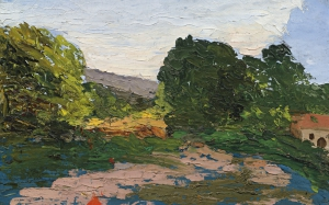 R049 Paysage du Midi c65