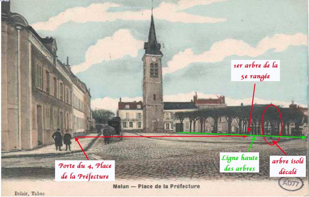 Fig. 24. 1er arbre de la 6e rangée décalé par rapport à la ligne haute des arbres