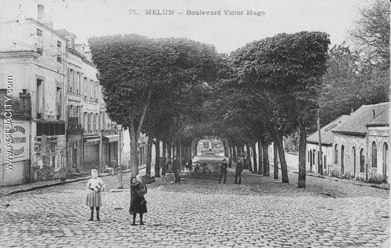 Fig. 39. Arbres décapités du Boulevard Victor Hugo