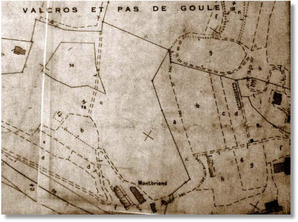 Extrait de cadastre portant mention de Montbriand vers 1860