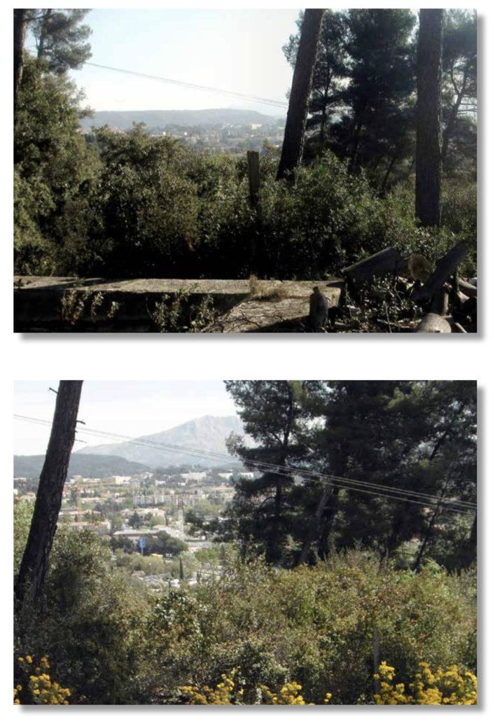 En haut de la propriété de Montbriand se trouve le reste d'un bassin d'où Cézanne a peint le tableau R698 (Photo DC 2015)