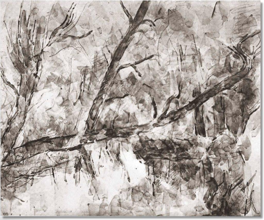 Branches d'arbres au-dessus de l'eau, RW633