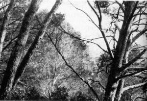 Photographie John Rewald, vers 1935