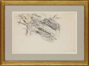 RW286 Étude d'arbre (le grand pin) 1885-1890