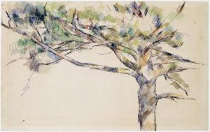 RW287 Étude d'arbre (Le grand Pin) vers 1890